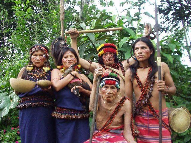 huaorani of ecuador research paper