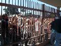 Movilizaci�n a los tribunales de Lomas de Zamora