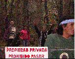 Comunidad Paichil Antriao volvió a su Territorio ayer...