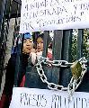Lanzan campa�a internacional por presos mapuches