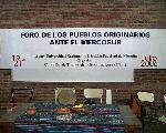 Córdoba: Fotos y testimonios del Foro de los Pueblos Originarios ante el Mercosur