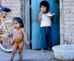 pobreza del chaco...
