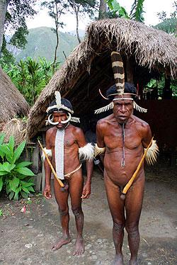 Papa Nueva Guinea - Wikipedia, la enciclopedia libre