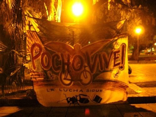 Pocho Vive...