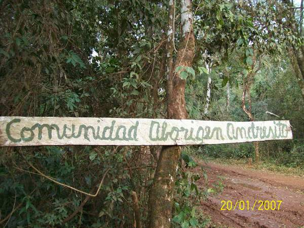 Misiones: Arrasan co...