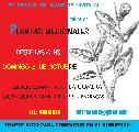 Taller de plantas medicinales en La Gomera / Domingo 3 de Oct. / 10 hs.