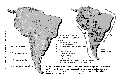 IIRSA: un camino para vaciar Am�rica Latina