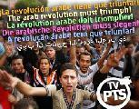 Egipto:Un video en 6 idiomas para gritar fuerte...