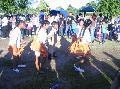 2da. Jornada de carnavales bolivianos en C�rdoba