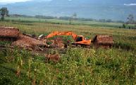 Guatemala: Desalojos ind�genas echan m�s le�a al fuego agrario