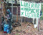 Fallo de la CIDH en favor de una comunidad mapuche de Villa La Angostura