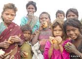 El Gobierno de la India da un giro de 360 grados y paraliza la expulsi�n de tribus