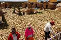 Pronunciamiento de La Uni�n de Comunidades Aymaras