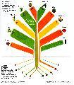 La extinci�n silenciosa: adi�s al 90% de las variedades de frutas y verduras