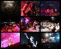 FaSinPat 10 a�os:  m�s de 20 mil personas de fiesta!