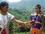 El racismo en los salarios en Guatemala