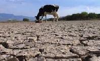 Emergencia agropecuaria en Santa Fe: el clamor de los que seguimos quedando afuera