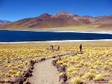 Chile: Comunidad Atacameña rechaza privatización de territorios emprendida por gobierno