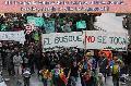 Neuquén: Foro en defensa de los Bosques Nativos..en Junín!!