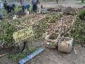 Nueva huerta comunitaria en Parque Centenario (sin rejas)