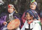 Parlamento venezolano se solidariza con pueblo ind�gena mapuche