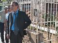 El juez no hall� pruebas en contra de Tognoli y dispuso su liberaci�n