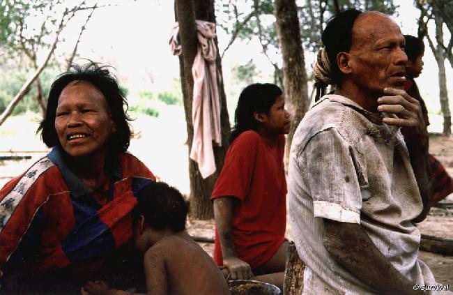 Los indígenas paragu...