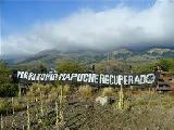 Santa Rosa Leleque: la comunidad mapuche cumplir� en febrero 6 a�os