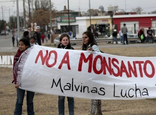 NO A MONSANTO/Malvin...