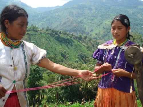 Jóvenes indígenas ay...