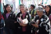 Los pueblos originarios presentan su posici�n ante el nuevo c�digo civil