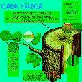 Canteros es-culturales / Viernes 24 de mayo / 11 hs.