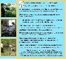 Novedades y pr�ximas actividades del Taller de Aguas: sumate a participar!