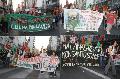 A un a�o del juicio a la fumigaci�n / No a Monsanto
