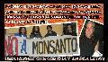 La Renga: rock contra Monsanto