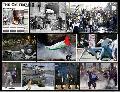 La Intifada por la Dignidad y la libertad contin�a