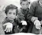 Pobreza y marginalidad detr�s de los saqueos