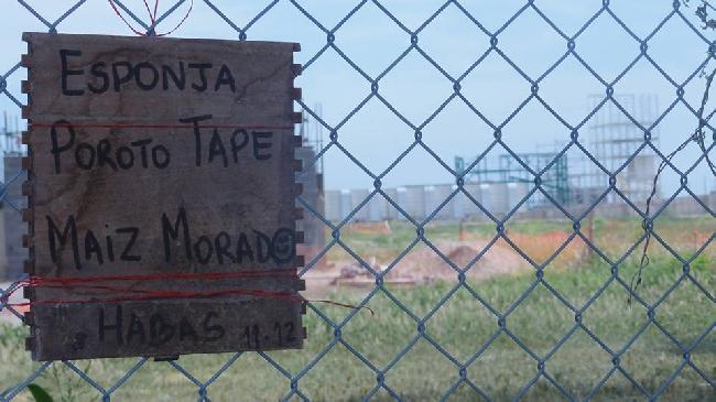 Monsanto: sin estánd...