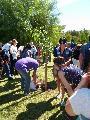 BOSQUE DE LA MEMORIA - Rosario - 24/03/2014 - Plantaci�n de �rboles .. recordar .. honrar
