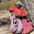 M�xico: Comunidad ind�gena de Chihuahua recupera territorios