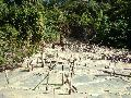 Campa�a por el cese de la explotaci�n petrolera en el Parque Nacional Calilegua