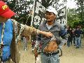 Chaco: Salvaje represi�n, denuncian balas de plomo