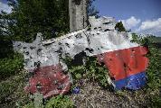 """Boeing MH17: """"El avión fue derribado por un caza ucranio"""""""