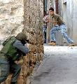 Palestina: 160 violaciones israel�es a la tregua