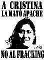 Cristina Linkopan - Acciones internacionales en memoria de la logko de Gelay Ko