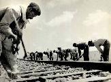 1º de marzo: Día de los ferroviarios