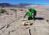 San Juan: Rescataron restos óseos de 1.200 años de antigüedad