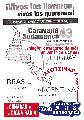 Rosario con Ayotzinapa