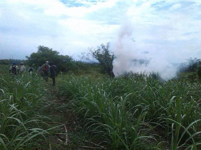 Cauca: Una vez más seguimos siendo Victimas del atropello por parte de la fuerza pública