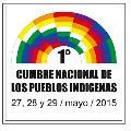 Declaración de la 1ª Cumbre de los Pueblos Indígenas